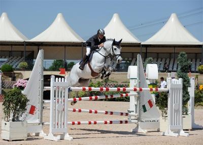 Equisud montpellier du 10 au 13 novembre 2011 - Salon du cheval montpellier ...