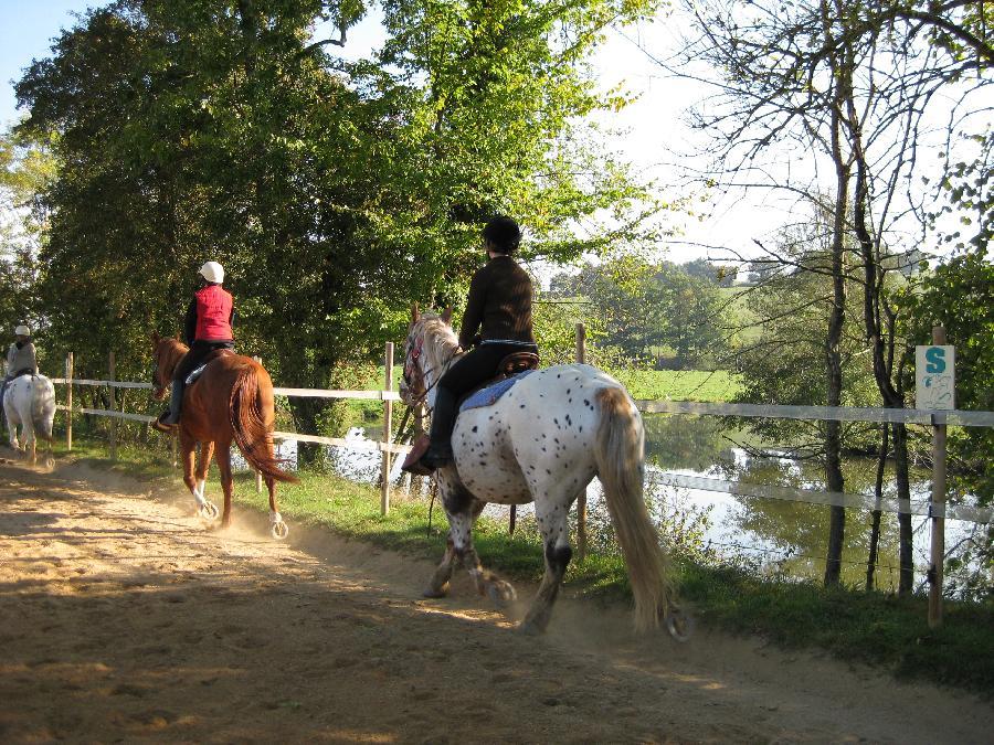 stage Initiation à l'équitation Saône-et-Loire