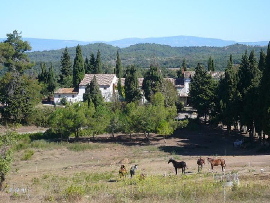 gite equestre Carcassonne-Verzeille Aude Ferme équestre de Pommayrac