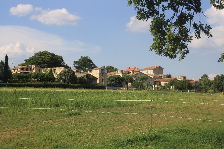 gite equestre Forcalquier Alpes de Haute-Provence Les Crins de Gaïa