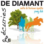 Les ecuries de diamant pension cheval ecurie for Code postal maureilhan