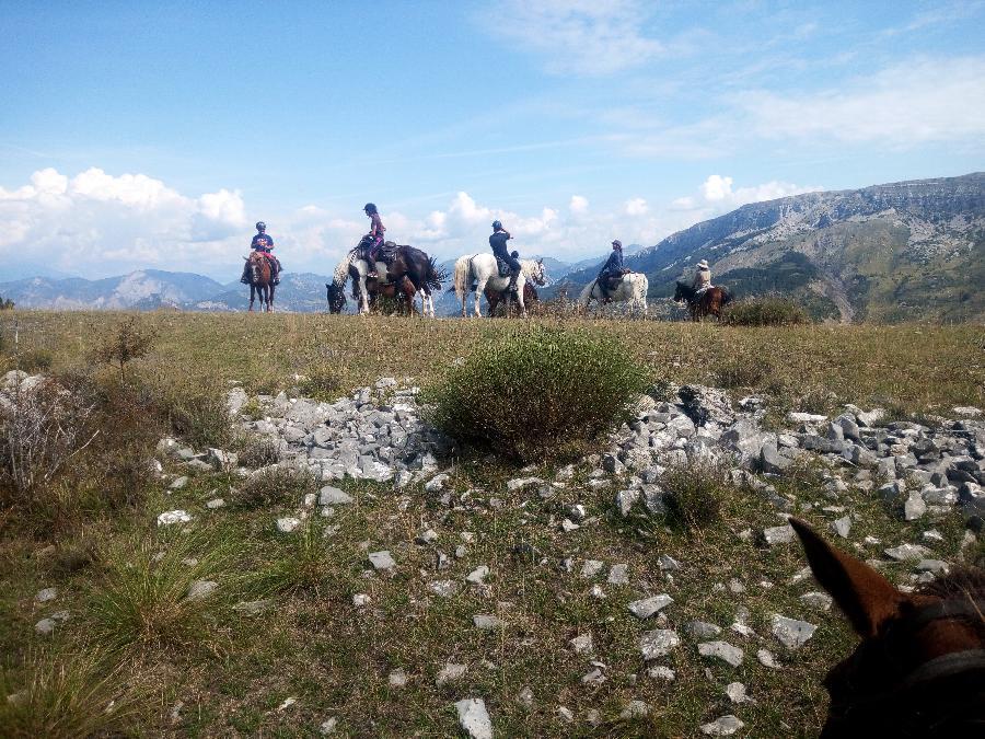 pension cheval à Saint-Geniez Alpes de Haute-Provence Provence