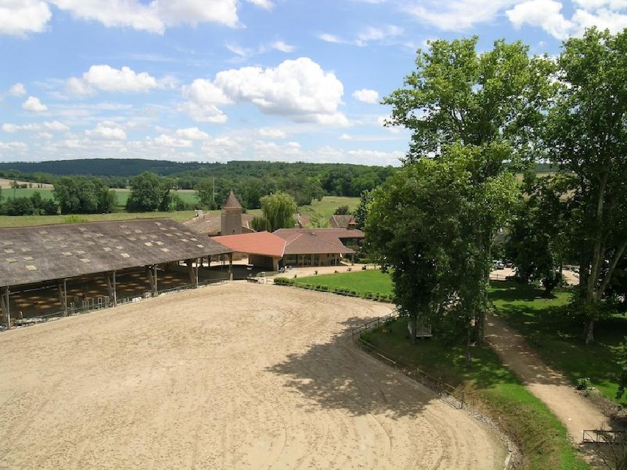 pension cheval à Laizé Saône-et-Loire Bourgogne du Sud