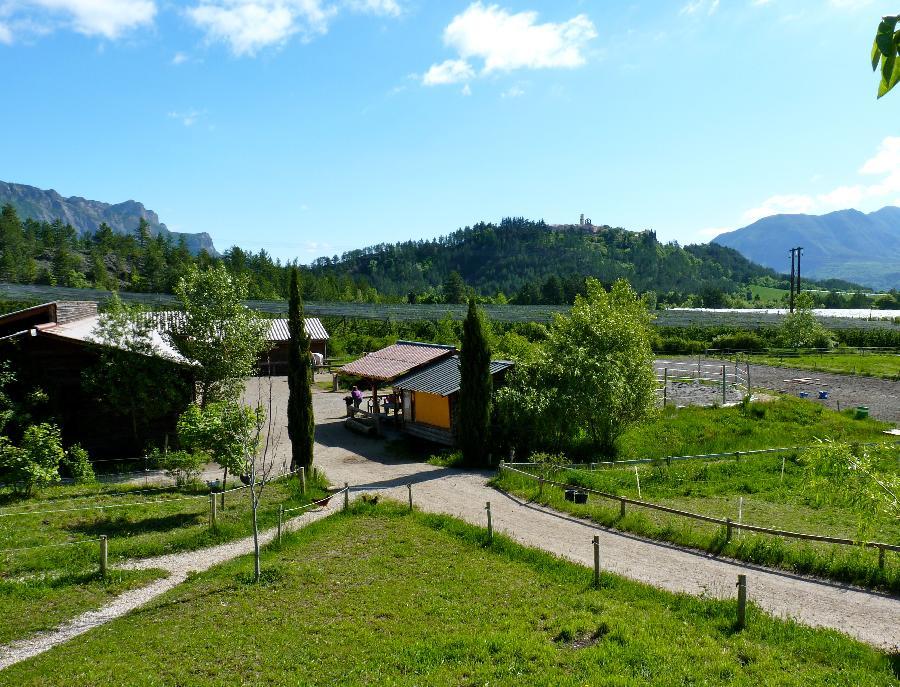 pension cheval à Ventavon Hautes-Alpes