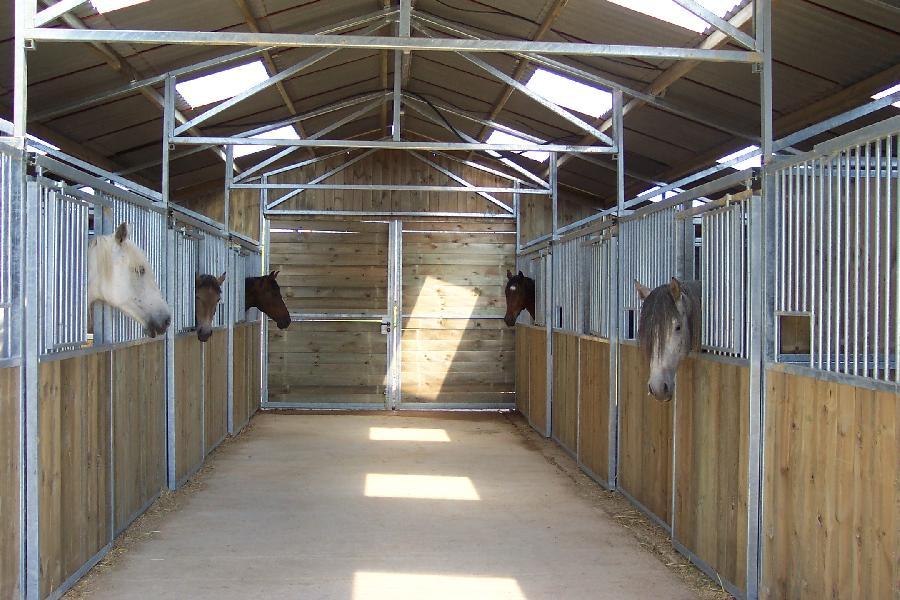 pension cheval à Cenves Rhône Beaujolais
