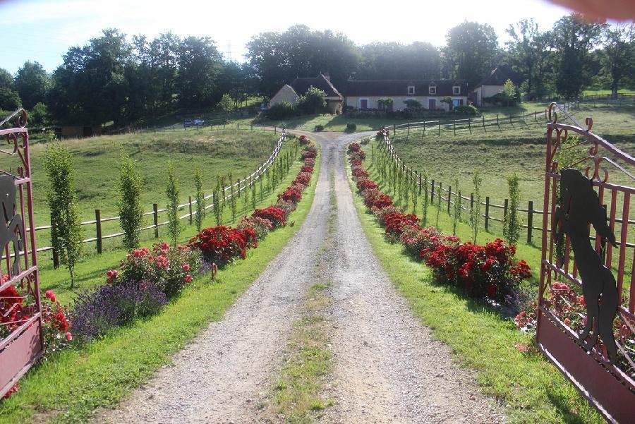 pension cheval à Baneuil Dordogne Périgord