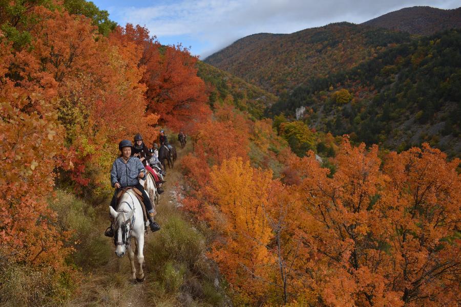 rando Randonnée équestre Alpes de Haute-Provence