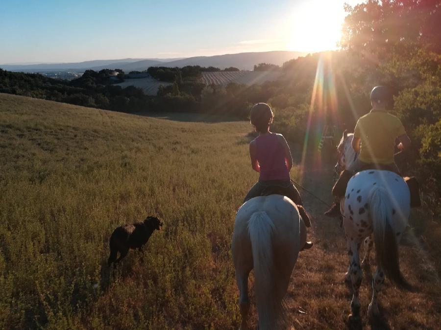rando Balade à cheval Alpes de Haute-Provence