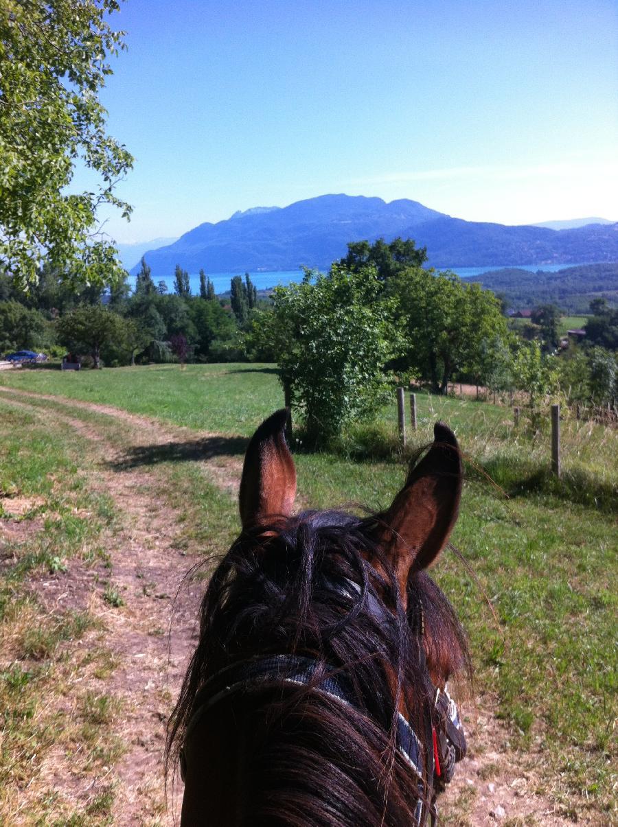 randonnee cheval 06