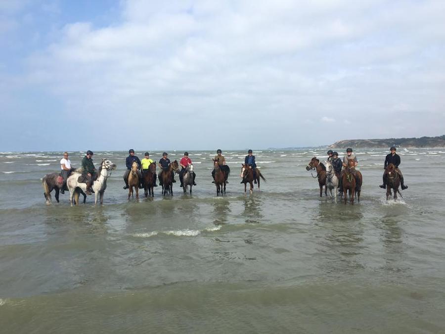 rando Randonnée équestre Finistère