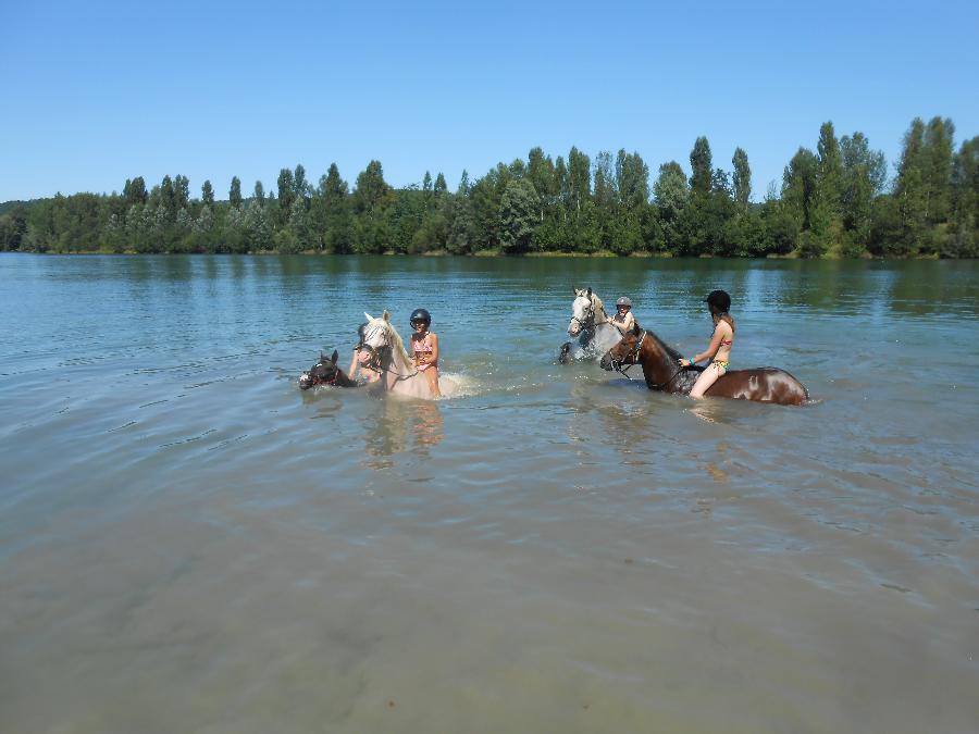sejour Séjour à la ferme équestre Haute-Garonne