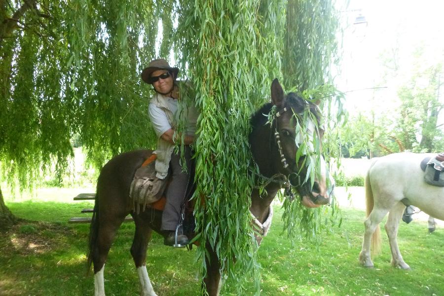 rando Randonnée équestre Saône-et-Loire