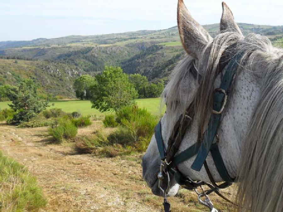 rando Balade à cheval Haute-Loire