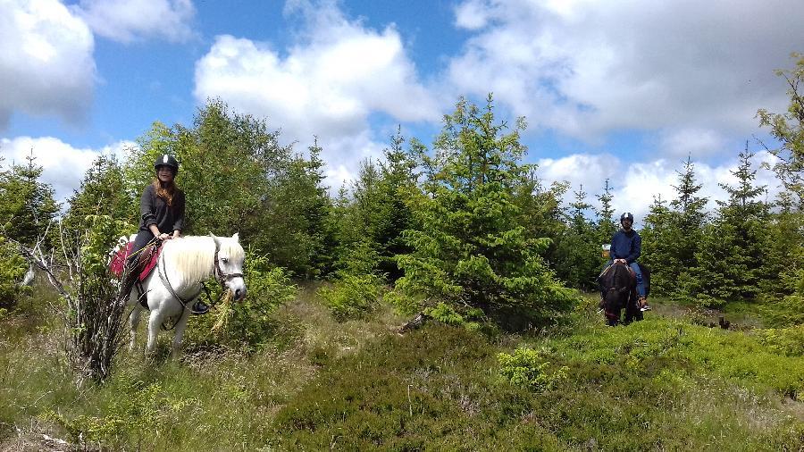 rando Balade à cheval Loire