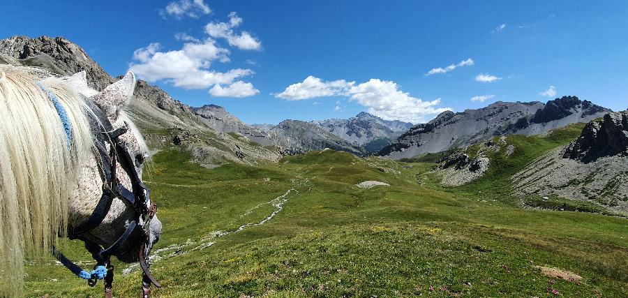 rando Randonnée équestre Hautes-Alpes