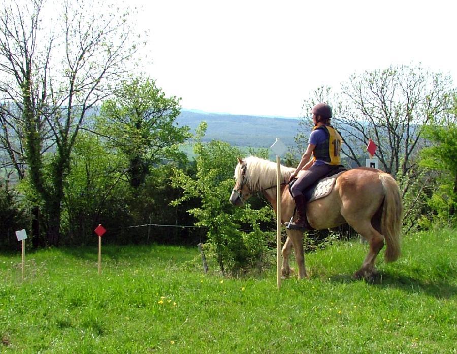 stage Equitation de pleine nature Jura