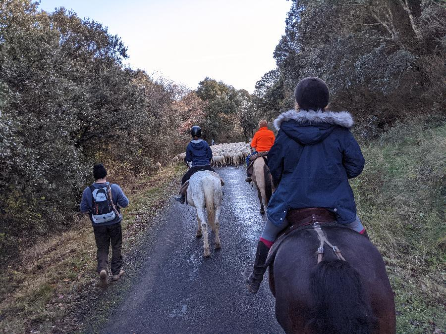 stage Equitation de pleine nature Aude