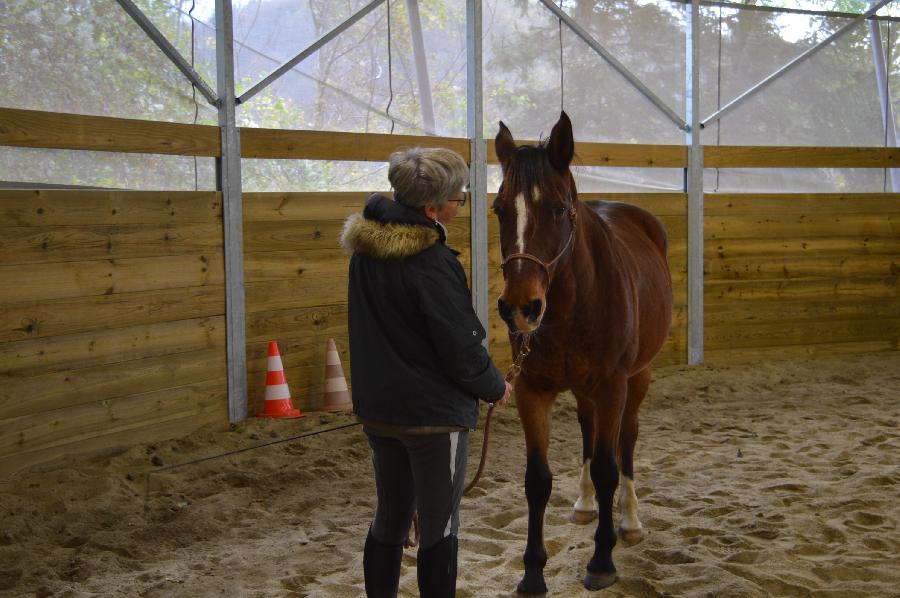 Stage Equitation Adultes Debutants Stage Equitation Pour Adultes Dans Le Parc Naturel Regional Du Haut Languedoc Sur Terre Equestre Com