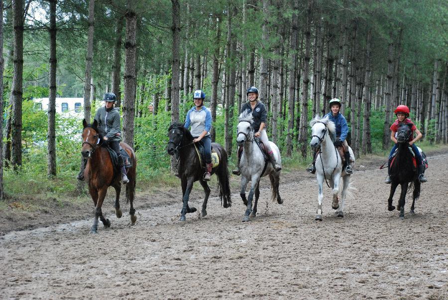 stage Equitation classique Saône-et-Loire