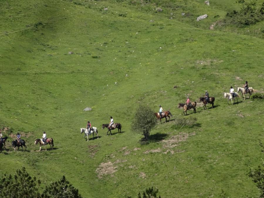 stage Equitation de pleine nature Haute-Garonne