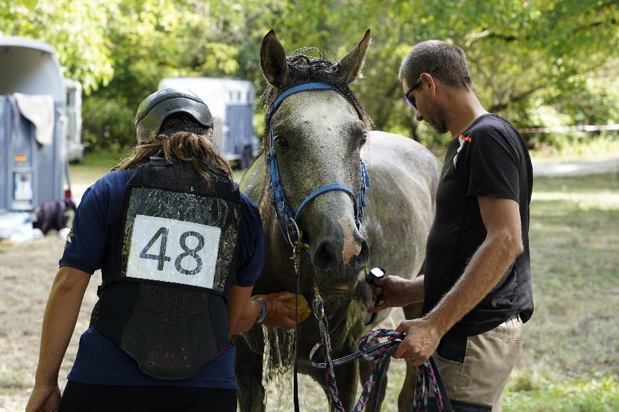 stage Endurance équestre Dordogne