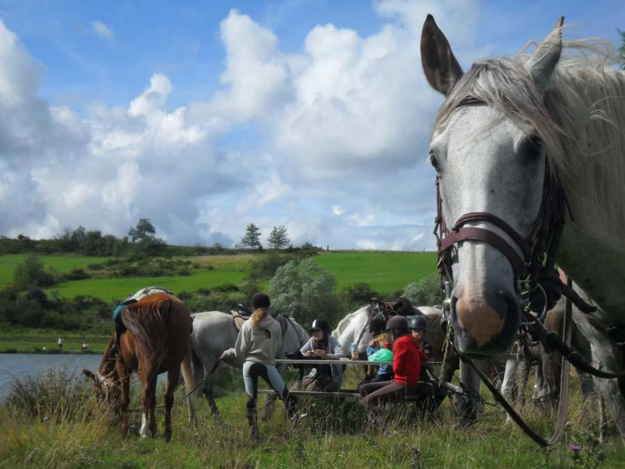 stage Equitation de pleine nature Haute-Loire