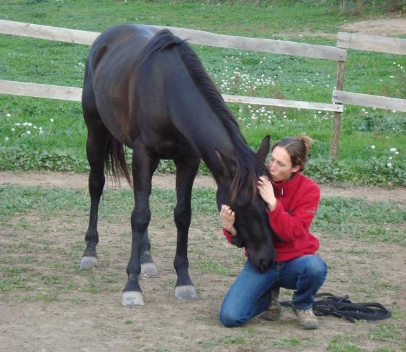 site de rencontre passion cheval