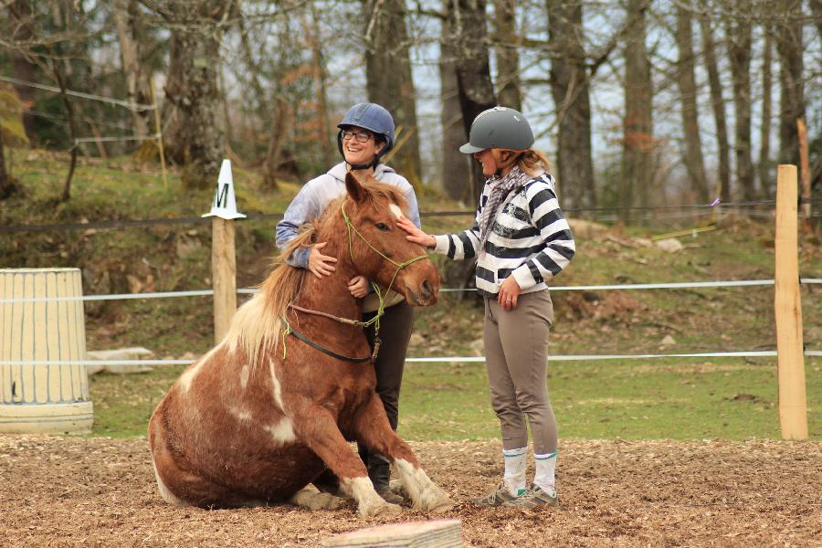 stage Equitation naturelle Allier