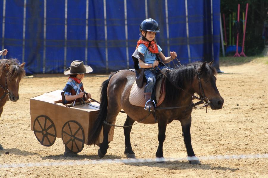 stage Equitation classique Rhône