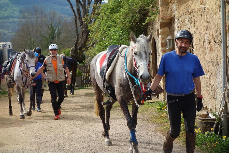 stage Equitation de pleine nature Yvelines