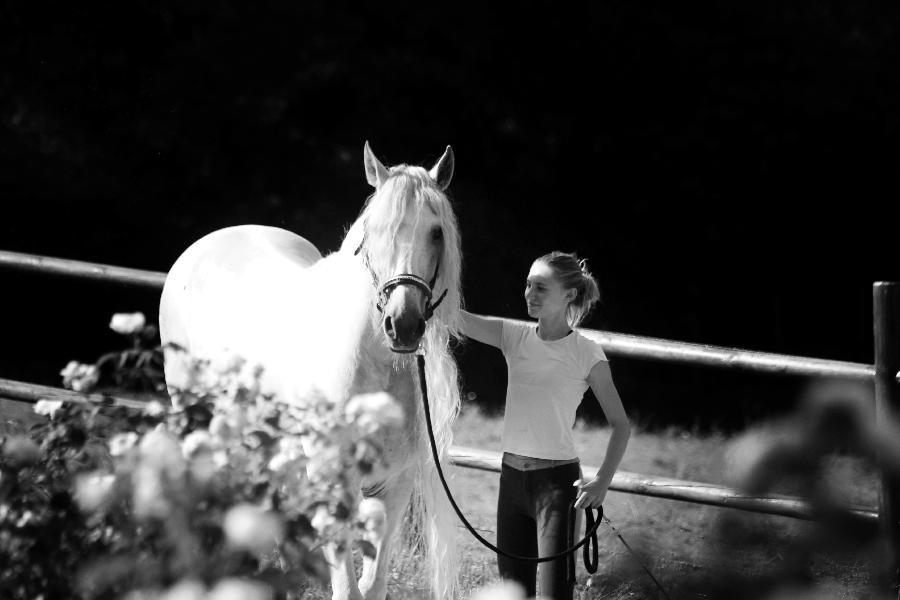 stage Equitation classique Dordogne