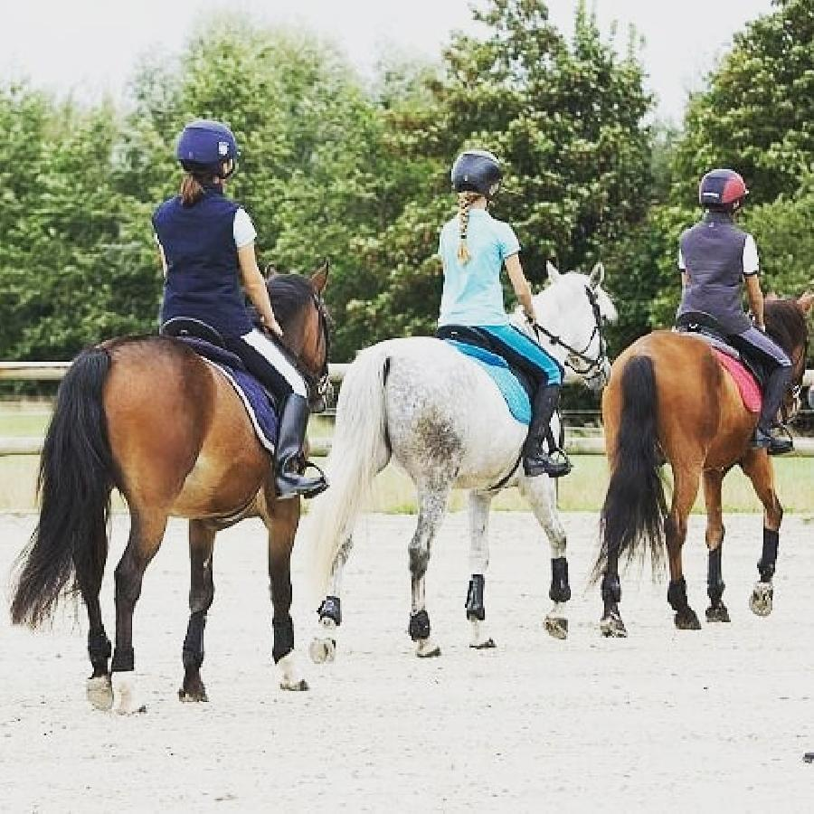 stage Initiation à l'équitation Seine-et-Marne