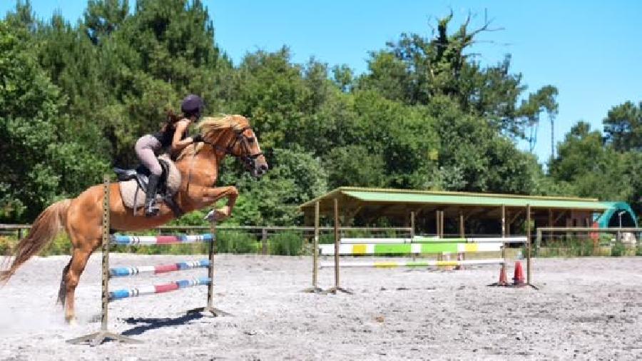 stage Equitation classique Landes
