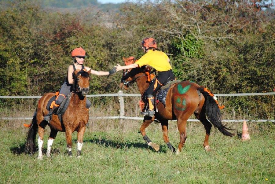 stage Equitation de pleine nature Tarn